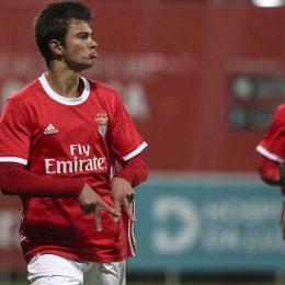 Benfica vs Desportivo das Aves Free Betting Tips